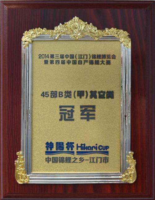 《45部B类(甲)其他类冠军》 2014第三届中国亚博体育app网址博览会