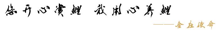 """金庄从业12年来以:""""您开心赏鲤,我用心养鲤""""为使命"""
