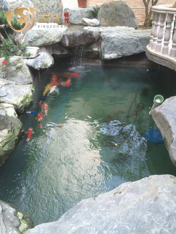 好鱼好水好池